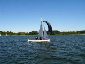 Clown Sails Fock Radial zu verkaufen